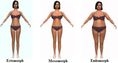 ectomorph, mesomorph, endomorph which one are you